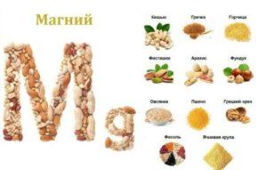О пользе магния в продуктах питания: что есть при дефиците магния. В каких продуктах больше всего магния: орехи, злаки, бобовые